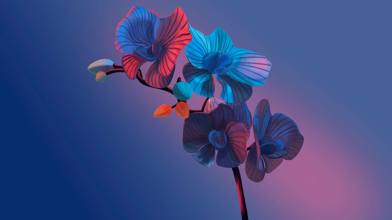 Орхидея   NFT – work in freelancer's portfolio