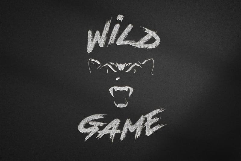 Логотип – work in freelancer's portfolio