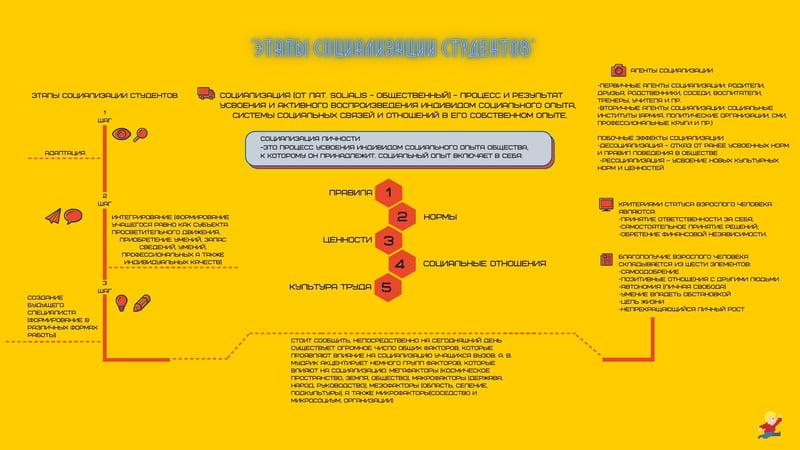 Этапы социализации студентов – работа в портфолио фрилансера