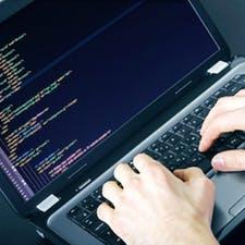 Фрилансер Rosca D. — Молдова, Кишинев. Специализация — HTML/CSS верстка, Javascript