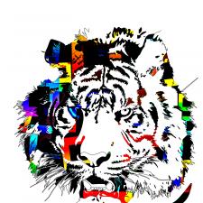 Фрилансер Dmitriy V. — Украина, Харьков. Специализация — Полиграфический дизайн, Векторная графика