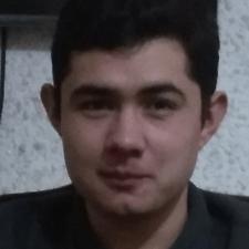 Фрилансер Бауыржан Т. — Казахстан, Кокчетав. Специализация — Живопись и графика, Векторная графика