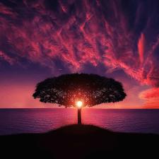 Freelancer Oksana R. — Ukraine, Uzhgorod. Specialization — Text translation