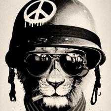 Фрилансер Виктор К. — Украина, Киев. Специализация — Дизайн сайтов