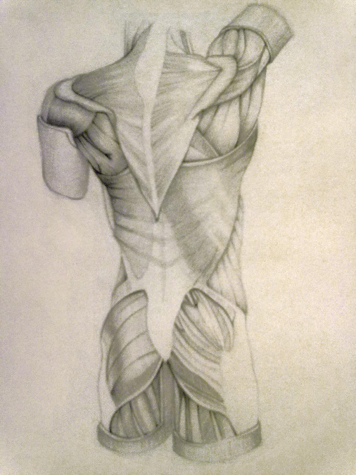 Рисунки человека карандашом 4 фотография