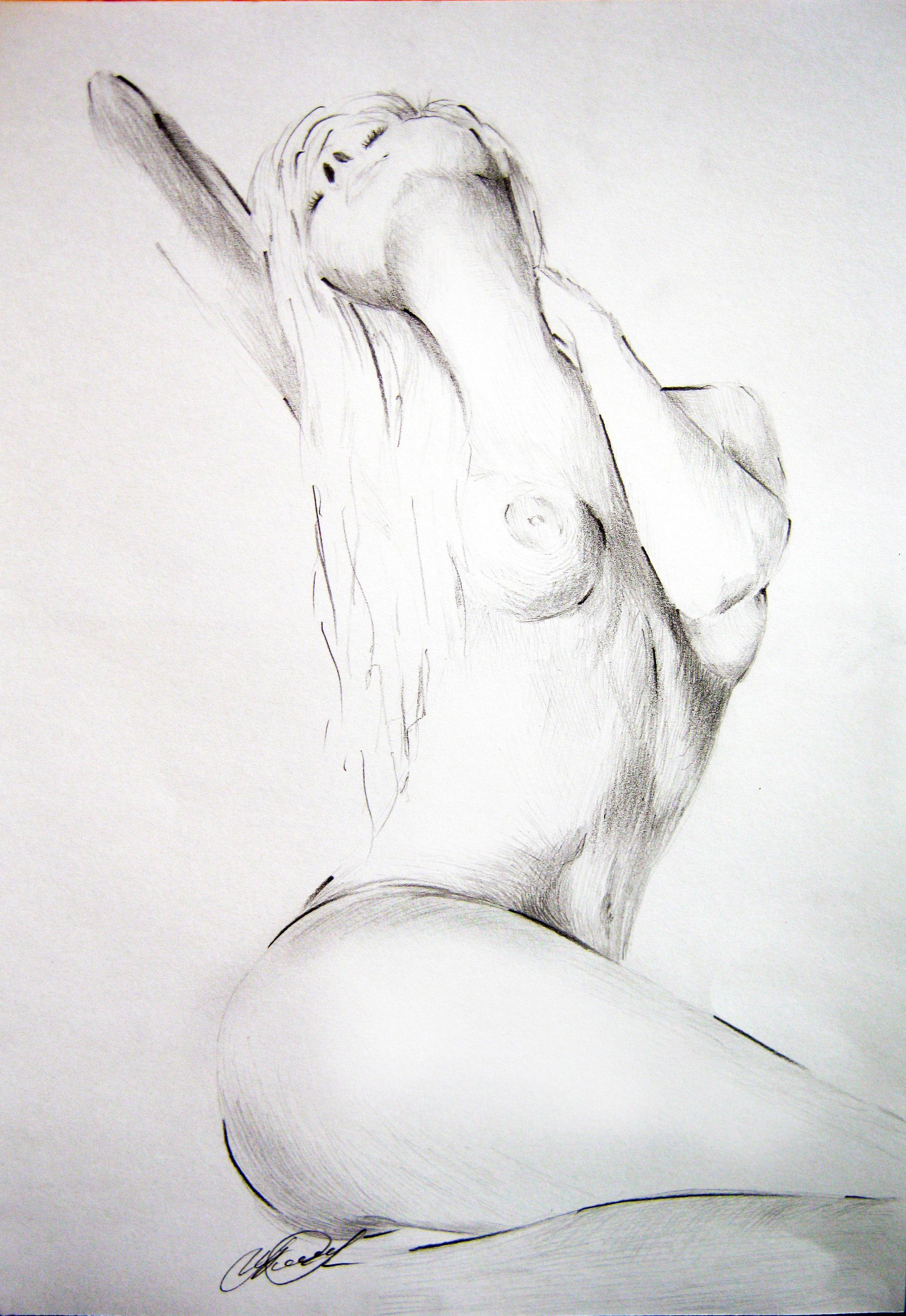 Рисунки девушка голая 14 фотография