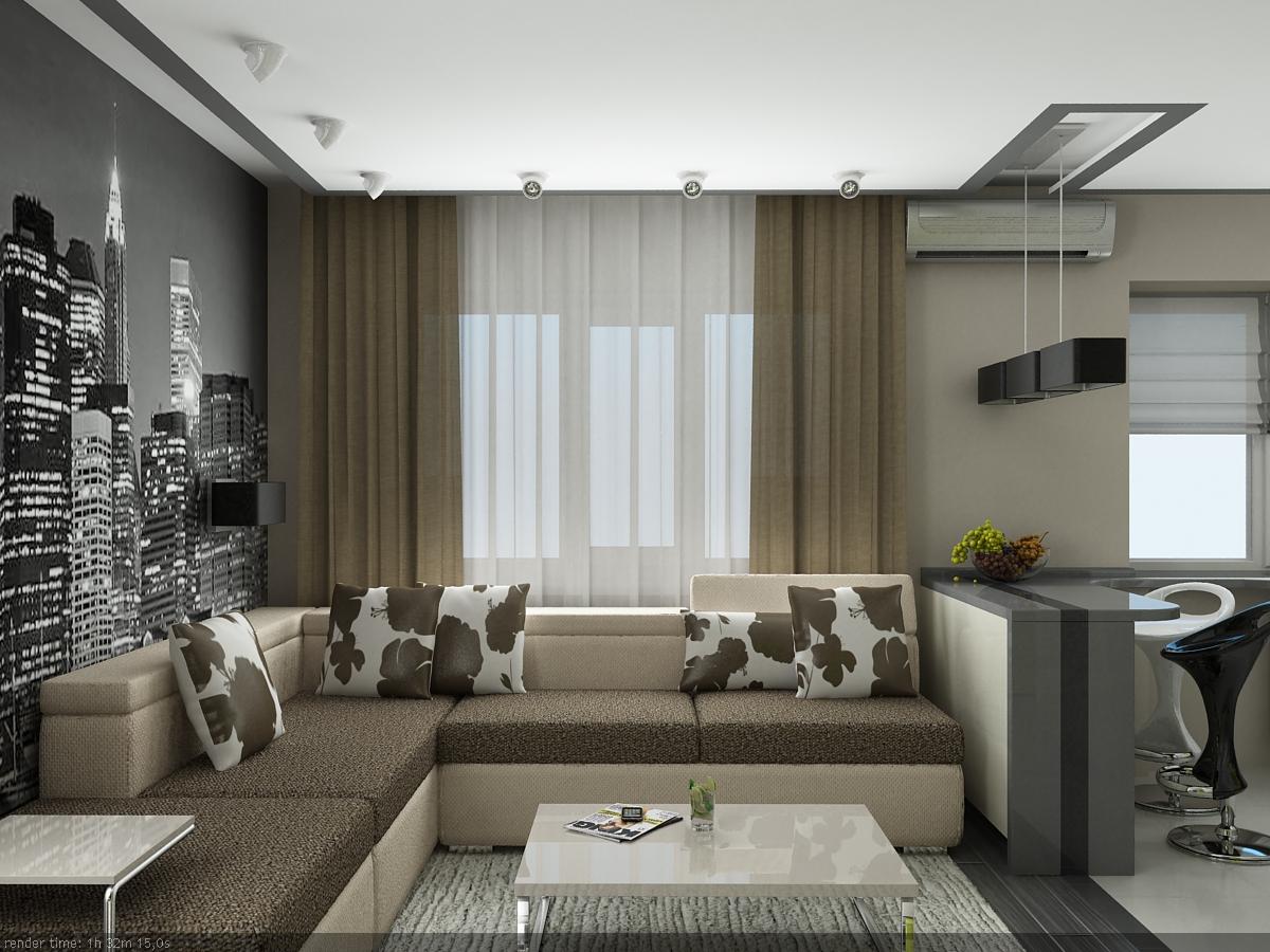 Дизайн интерьера однокомнатной квартире фото