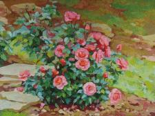 Камни и розы