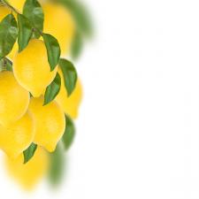 фотоколлаж лимоны