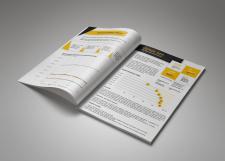 Дизайн аудит. отчетности золотодобывающей компании