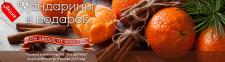 Новогодний баннер для интернет-магазина цветов 2