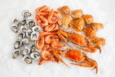 Доставка морепродуктов в рестораны и кафе