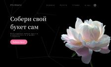 Первая страница сайта VX company