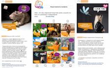 SMM ведение Instagram брендовый аккаунт