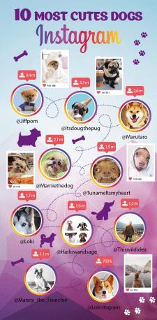 баннер - инфографика для сайта