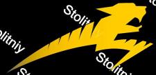 "Логотип ""Тигриная молния"""