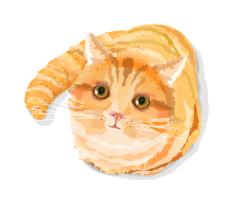 вектор, рыжий котик