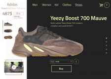 Yeezy Boost 700 Mauve / Product page design