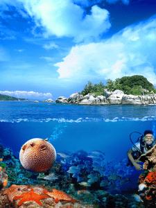 Морський світ