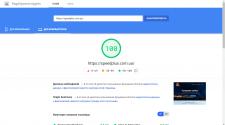 Ускорение лендинга IT-компании (Wordpress)