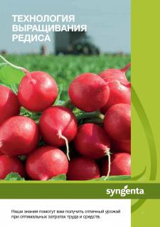 Каталог по семенам редиса