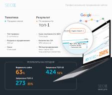 ROI по SEO >250% для онлайн-магазина семян