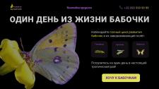 Главный экран лендинг для выставки-продажи бабочек