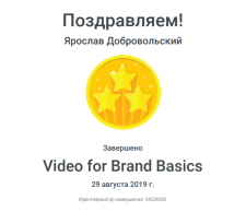 Сертификат Google video for brand basis