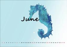 Верстка и дизайн календаря