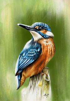 Рисунок Птица