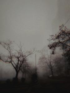 Туманный Киев