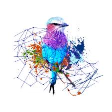 Bird in blue grid
