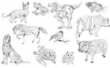 Антистресс-животные (раскраска)