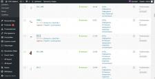 Наполнение интернет-магазина на WordPress