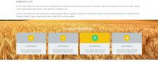 AgroLtd - сайт агро-компании