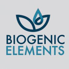 Разработка логотипа Blogenic-Elements