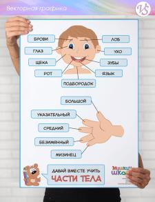 """Информационный плакат """"Части тела"""""""