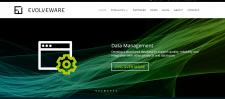 SEO аудит сайта Evolve Ware в Великобритани