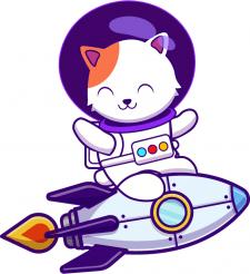 Кот на ракете