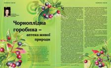 журнал ORGANIC