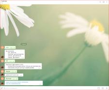 Информационный бот для телеграмм