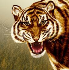 Тигр, рисунок в ФШ