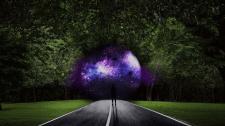 kollage: portal