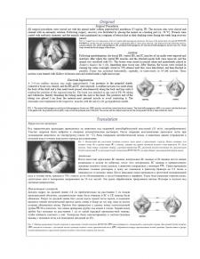 Хирургические процедуры (самцы крыс)