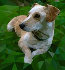 Loy Poly dog