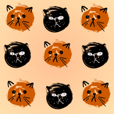Cats face illustration