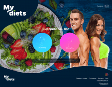 Под ключ mydiets.ru на WordPress