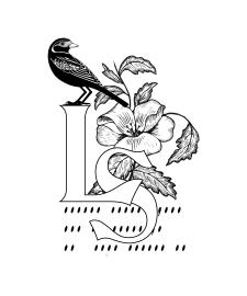Логотип для писателя, стилизован под экслибрис