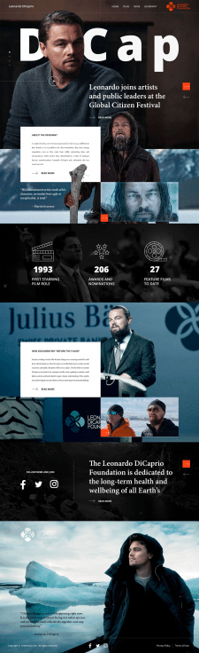 Дизайн landing page LeoDiCaprio