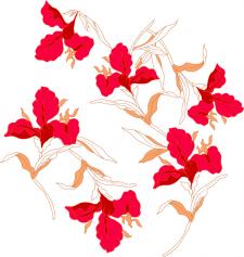 Векторная отрисовка цветов